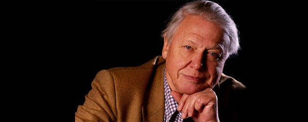 David Attenborough reflexiona…